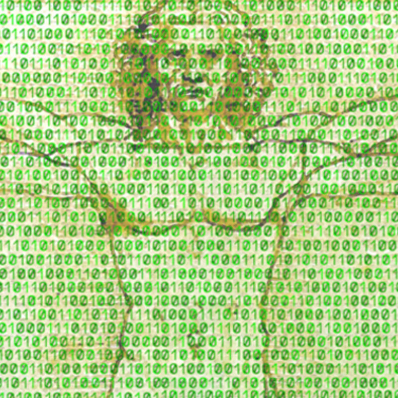 Human in the Data